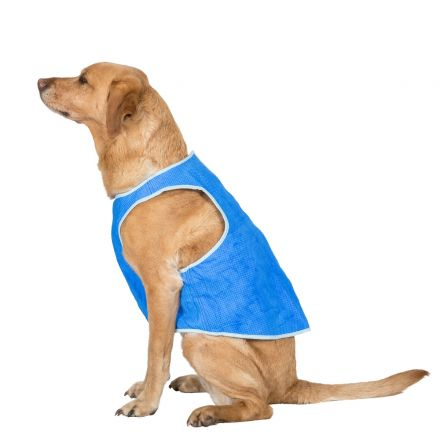 Alaska Large Dog Cooling Vest