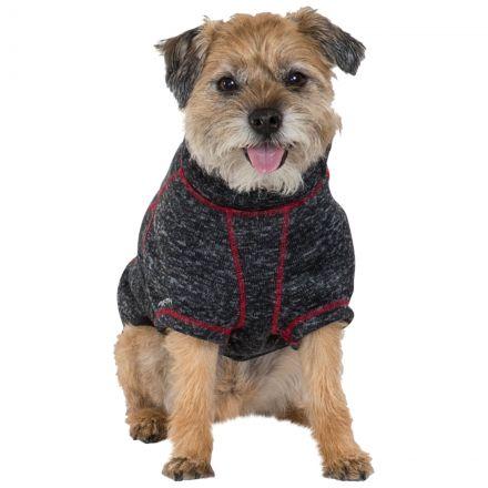 Boomer Dog Fleece AT300