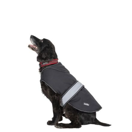 Butch Medium Fleece Lined Softshell Dog Coat