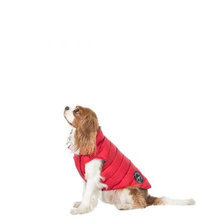 Dogby XS Down Dog Coat - PX1