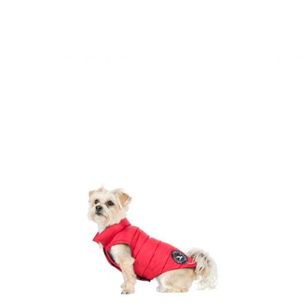 Dogby XXS Down Dog Coat - PX1