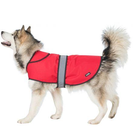 DUKE X-LARGE 2 IN 1 WATERPROOF DOG COAT