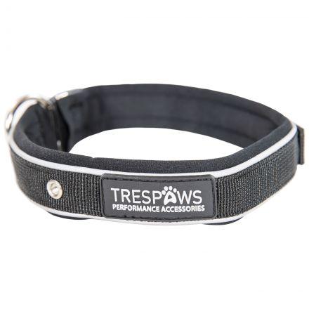Keira Reflective Dog Collar in Black