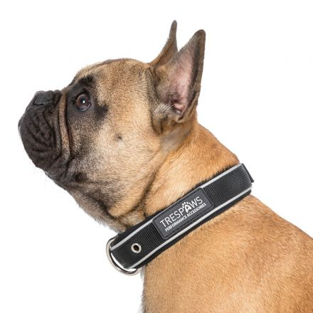 Keira Small Reflective Neoprene Dog Collar in Black