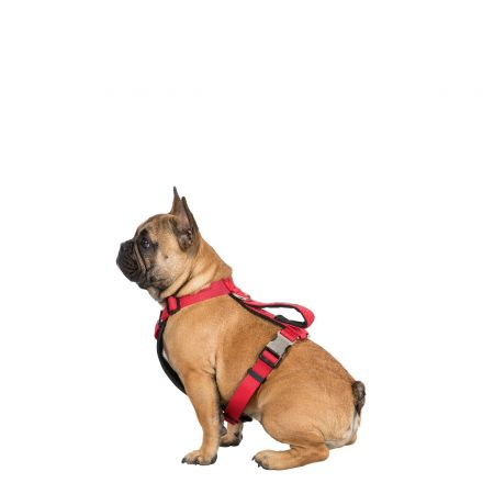 Tanked S/M Reflective Dog Harness in Red