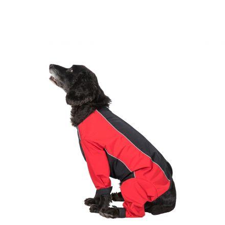 Tia Medium Dog Coat With Legs in Black