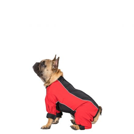 Tia Small Dog Coat With Legs in Black