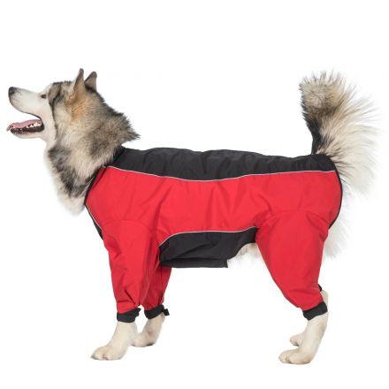 Tia XLarge Dog Coat With Legs in Black