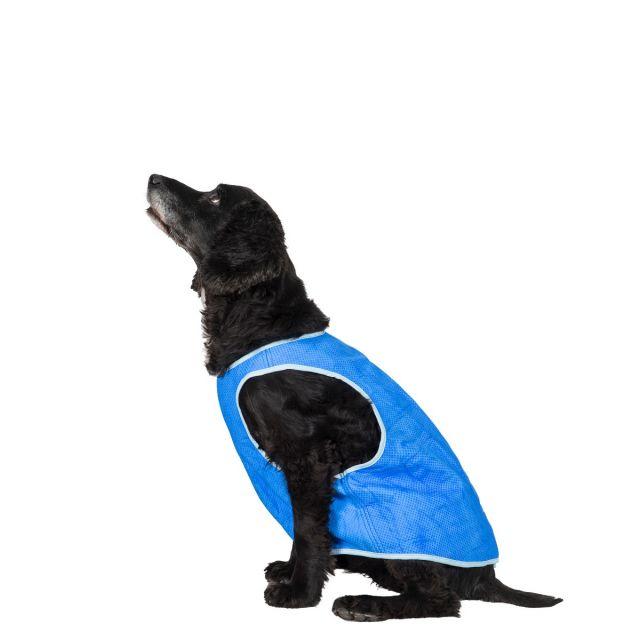 Trespass Medium Trespaws Dog Cooling Vest Alaska Sapphire