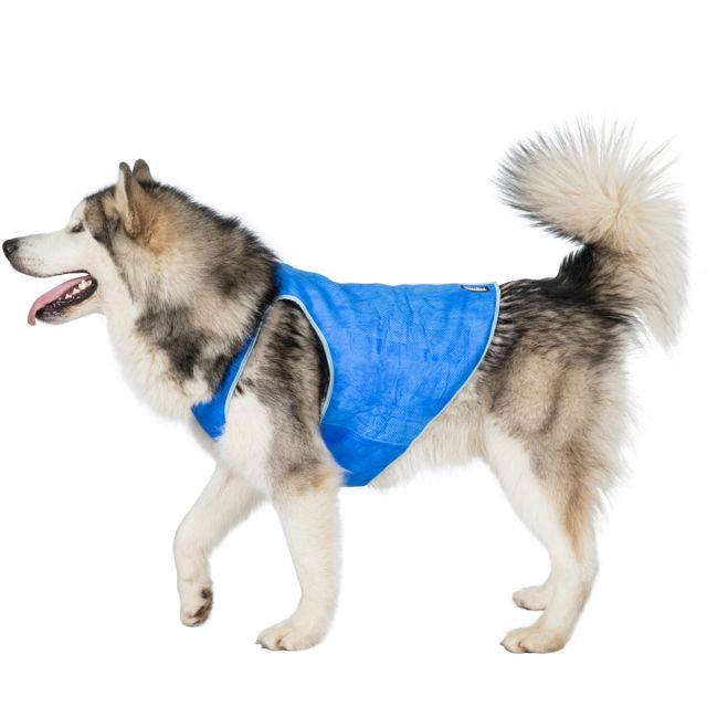 Trespass X-Large Trespaws Dog Cooling Vest Alaska Sapphire