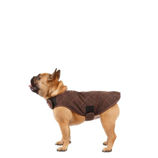 Artemis Water Resistant Diamond Quilted Dog Jacket - BARK S