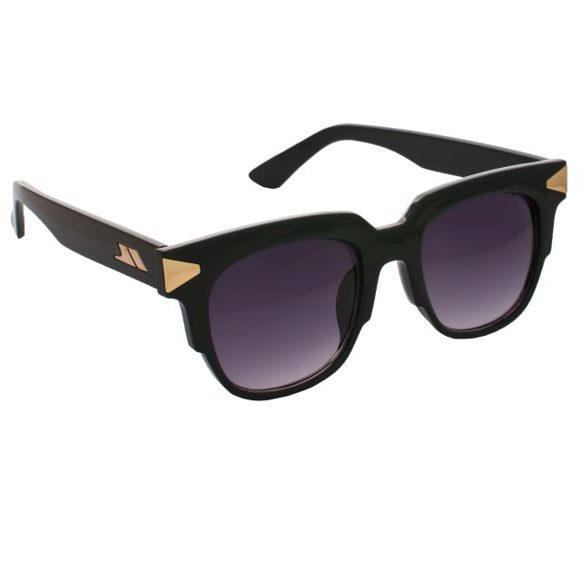 Blenheim Unisex Sunglasses in Black