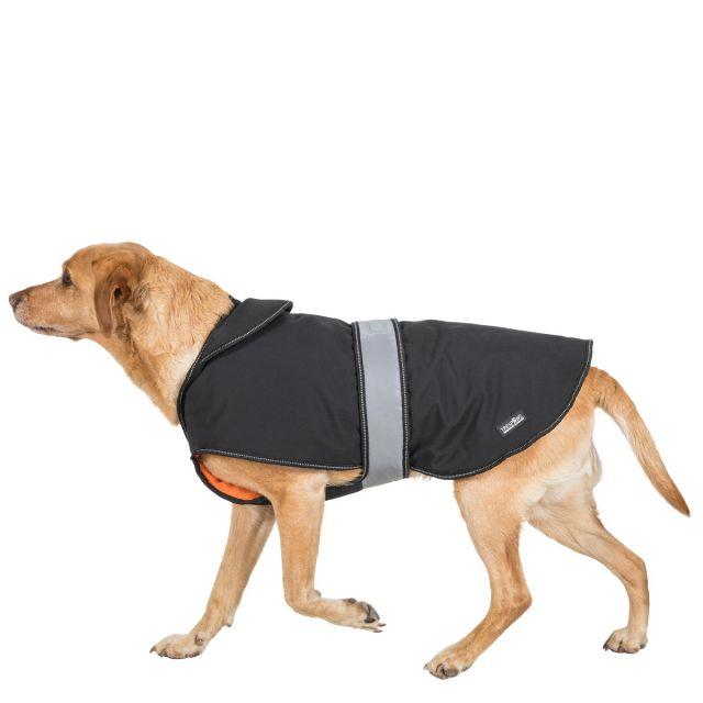 Butch Large Fleece Lined Softshell Dog Coat - BLX