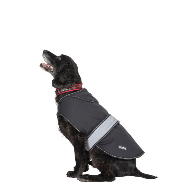 Butch Medium Fleece Lined Softshell Dog Coat - BLX