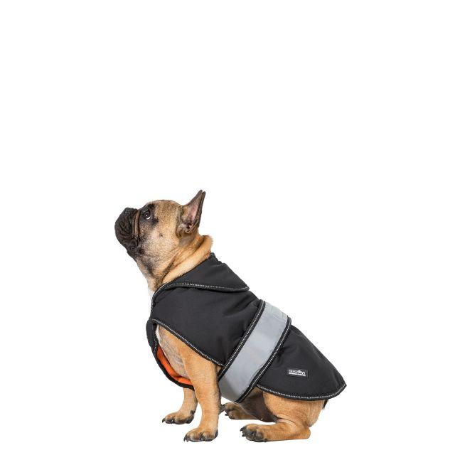 BUTCH X -  SOFTSHELL DOG JACKET - BLACK XXS