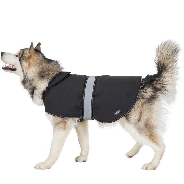 Butch XL Fleece Lined Softshell Dog Coat - BLX