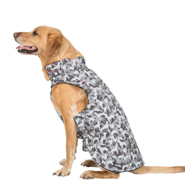 Charly Large Printed Waterproof Dog Coat - GDX