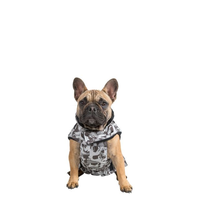 Charly Small Printed Waterproof Dog Coat - GD1