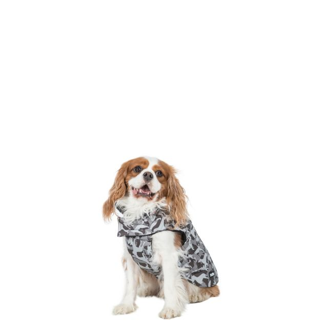 Charly XS Printed Waterproof Dog Coat - GD1