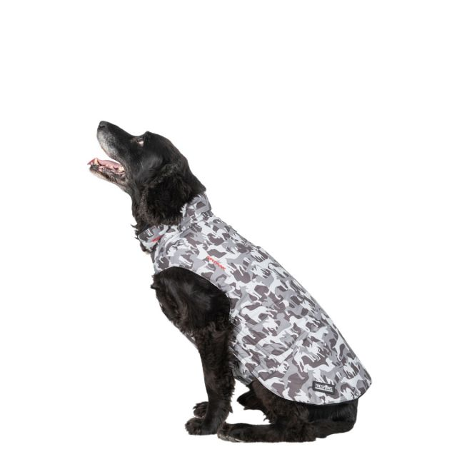 Charly Medium Printed Waterproof Dog Coat