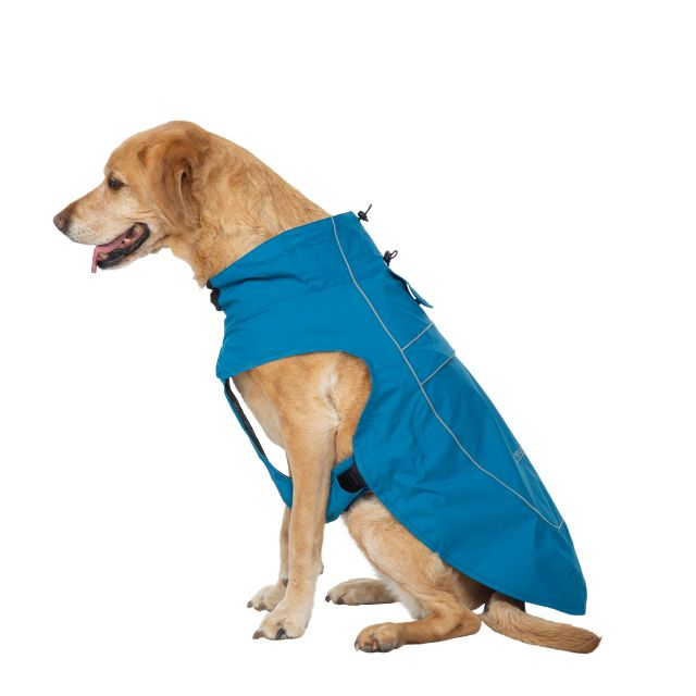 Trespass Dog Raincoat Cinder - MARINE L, Front view on mannequin