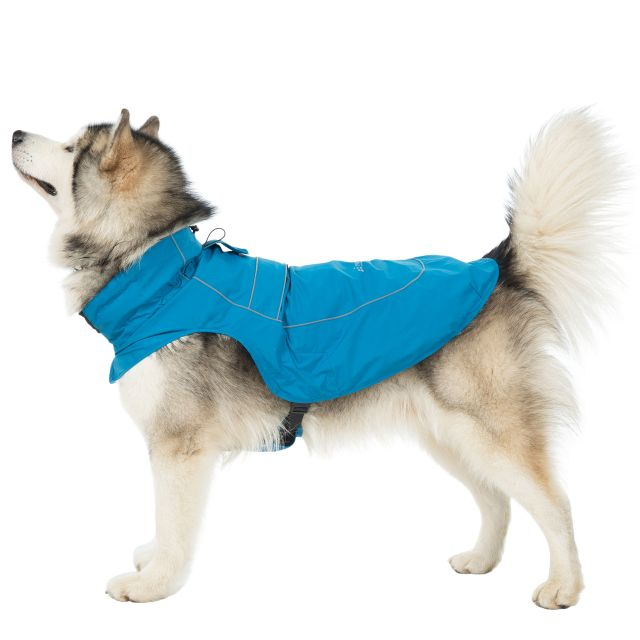 Trespass Dog Raincoat Cinder - MARINE XL