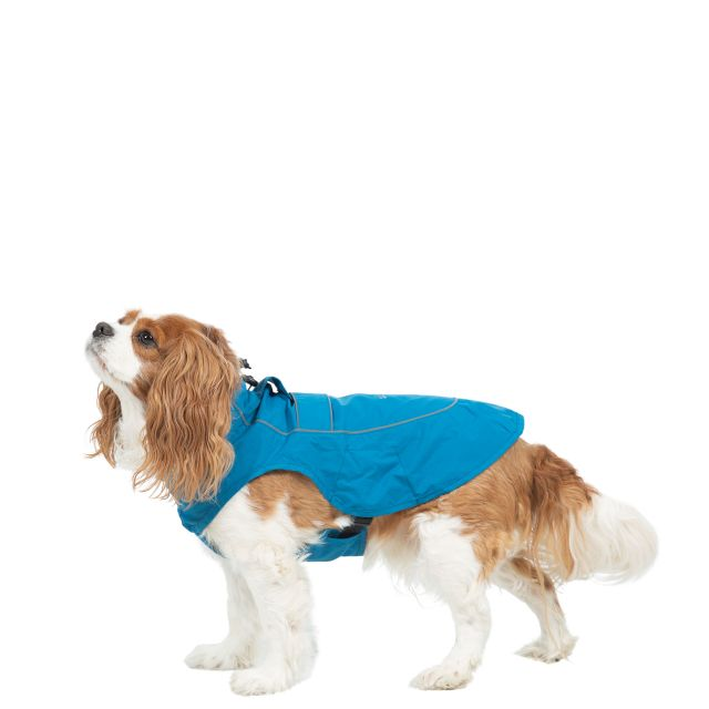 Trespass Dog Raincoat Cinder - MARINE XS