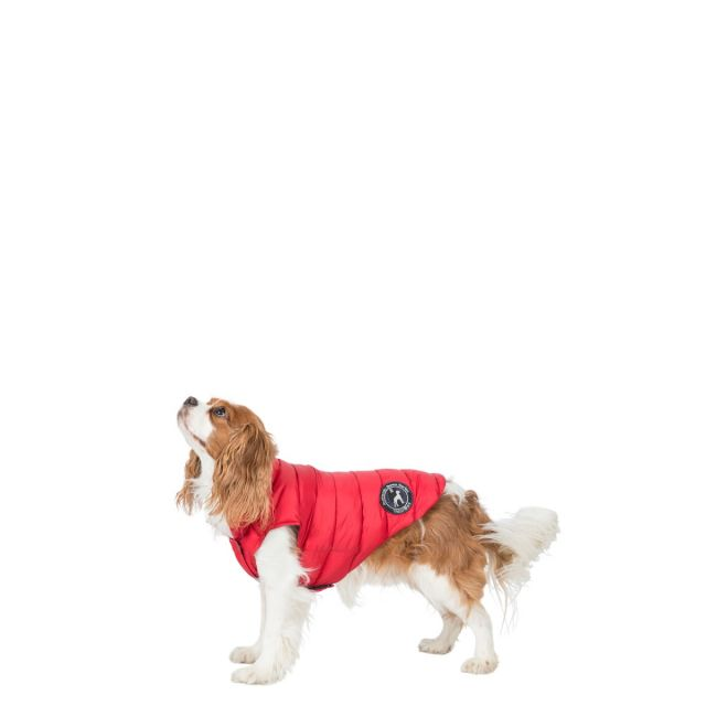 Trespass X-Small Down Dog Jacket Dogby