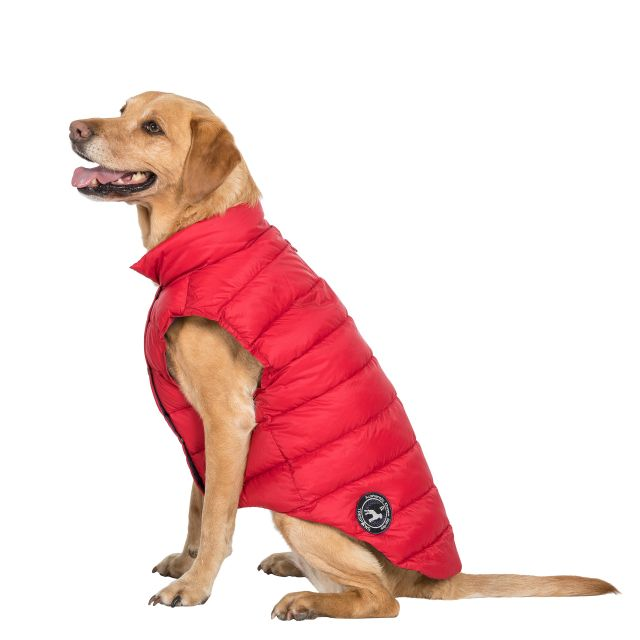 DOGBY - DOG DOWN JACKET - POSTBOX RED S