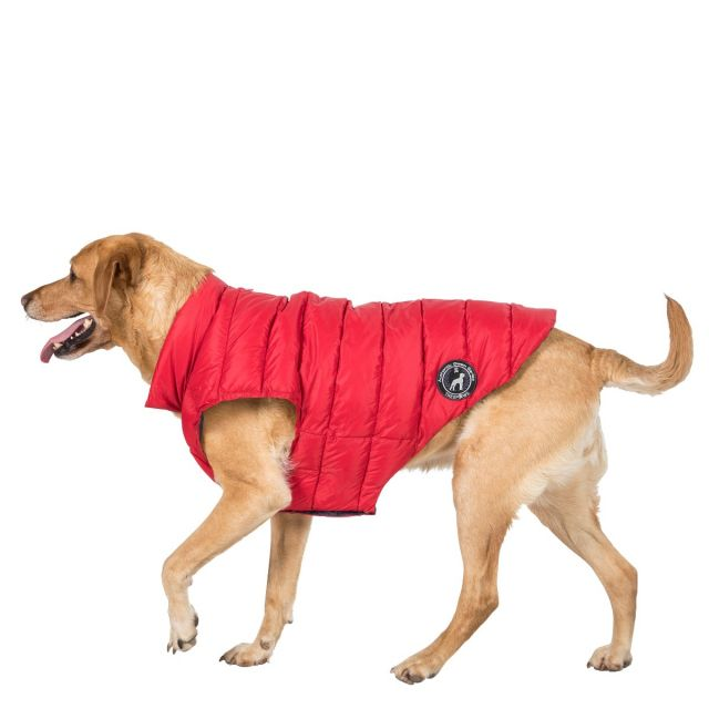 Dogby Large Down Dog Coat - PX1