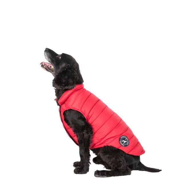 Dogby Medium Down Dog Coat - PX1