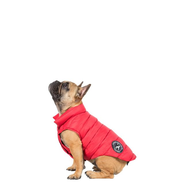 Dogby Small Down Dog Coat - PX1