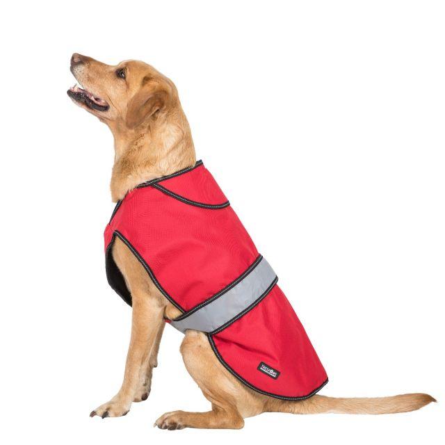 Duke Large 2 in 1 Waterproof Dog Coat in Red