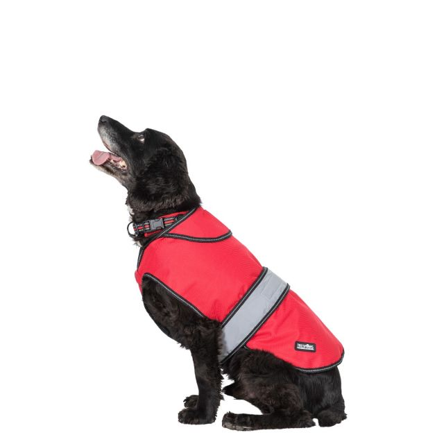 Duke Medium 2 in 1 Waterproof Dog Coat - RDX