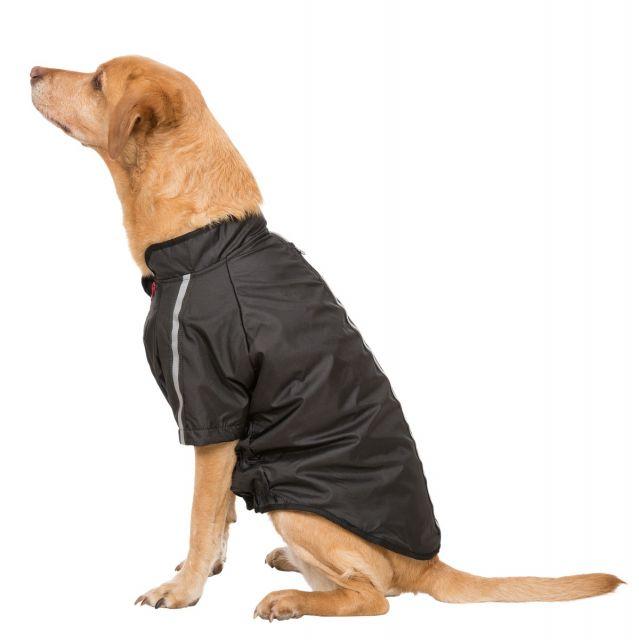 Khaos Large Waterproof Dog Coat - BLK
