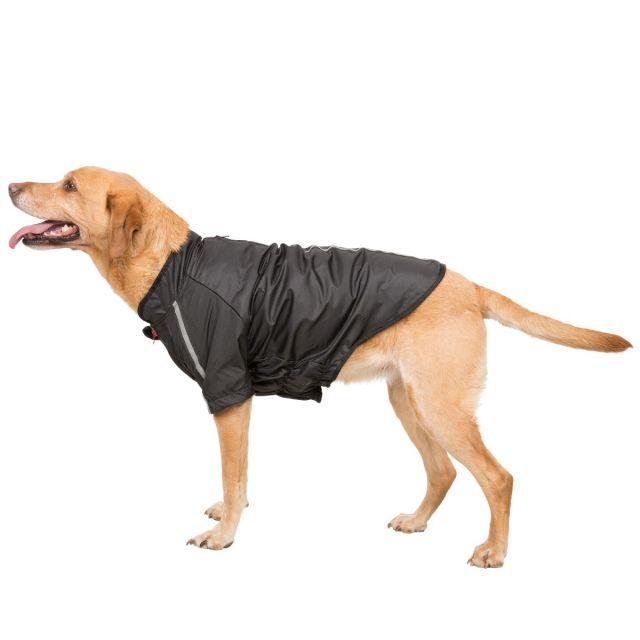 Khaos Large Waterproof Dog Coat in Black