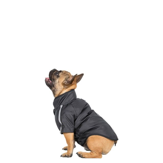 Khaos Small Waterproof Dog Coat in Black