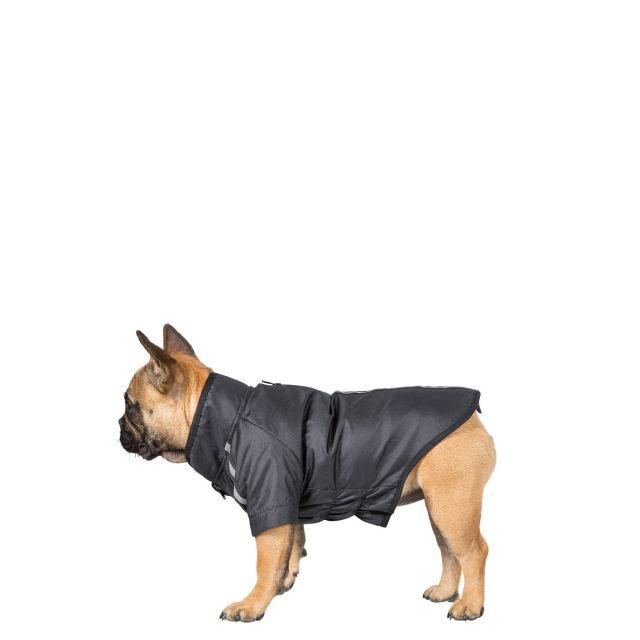 Khaos Small Waterproof Dog Coat - BLK