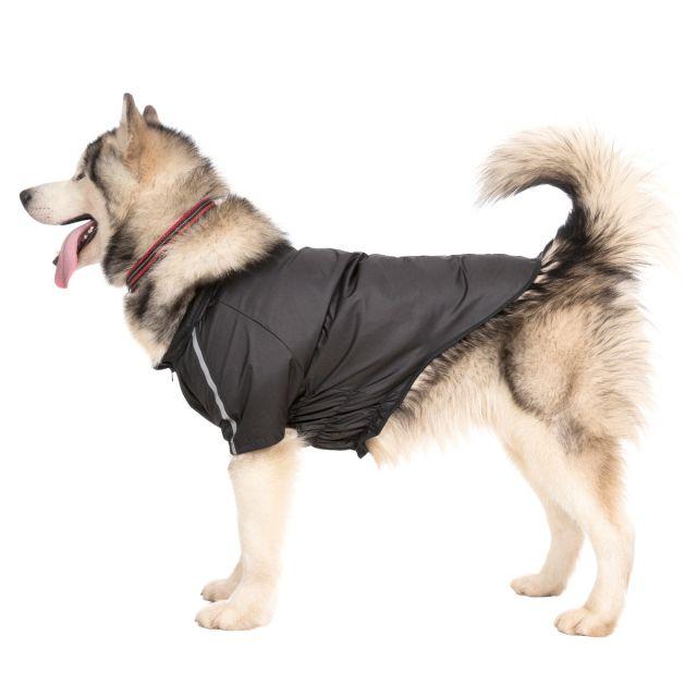Khaos X-Large Waterproof Dog Coat in Black