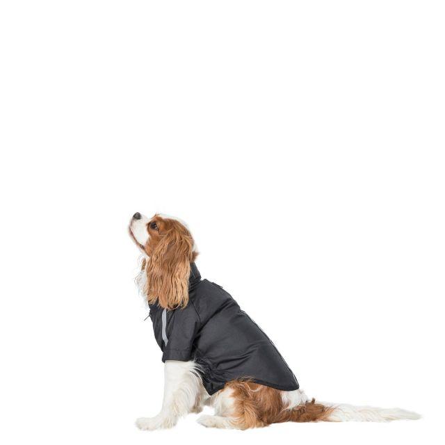 Khaos XS Waterproof Dog Coat - BLK