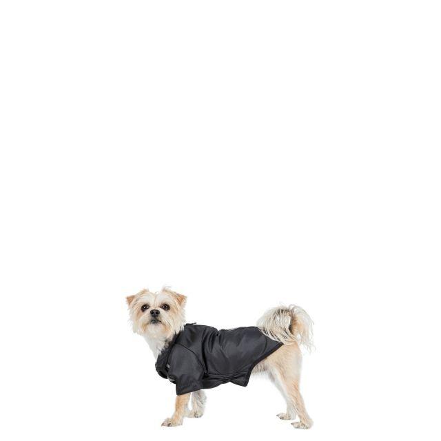 Khaos XXS Waterproof Dog Coat in Black