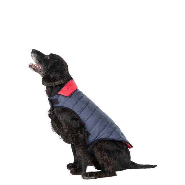 Kimmi Medium Quilted Reversible Packaway Dog Coat in Grey