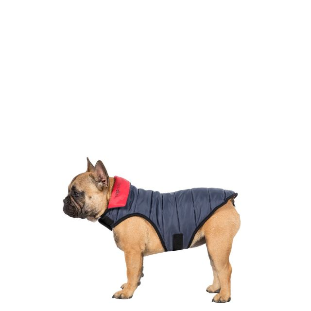 Kimmi Small Quilted Reversible Packaway Dog Coat - FLI