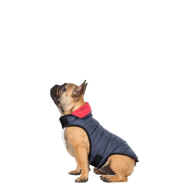 Kimmi XXS Quilted Reversible Packaway Dog Coat in Grey