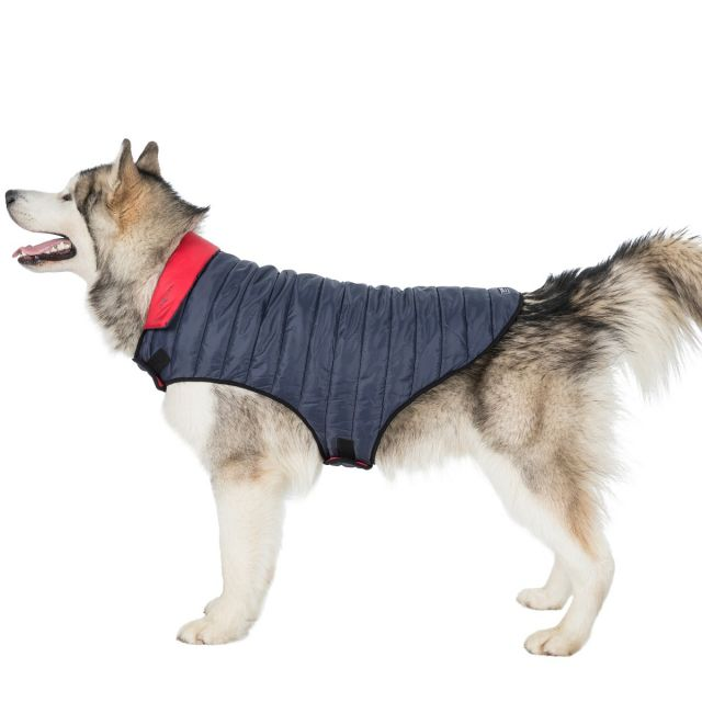 Kimmi XL Quilted Reversible Packaway Dog Coat - FLI