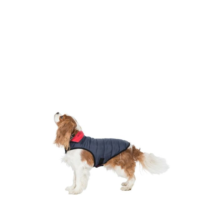 Kimmi XS Quilted Reversible Packaway Dog Coat - FLI