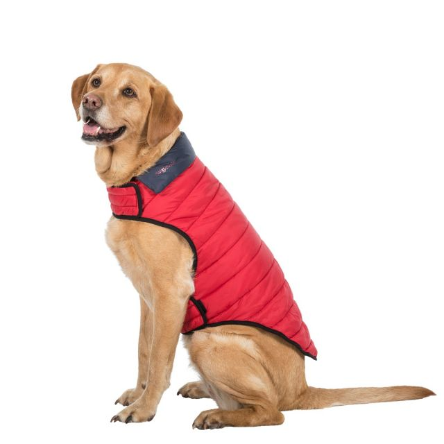 Trespass Large Quilted Reversible Packaway Dog Coat Kimmi