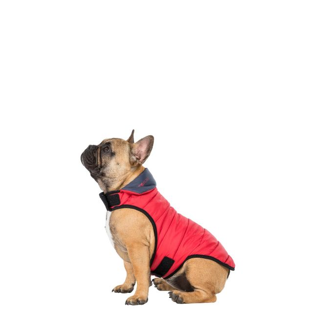 Trespass Small Quilted Reversible Packaway Dog Coat Kimmi