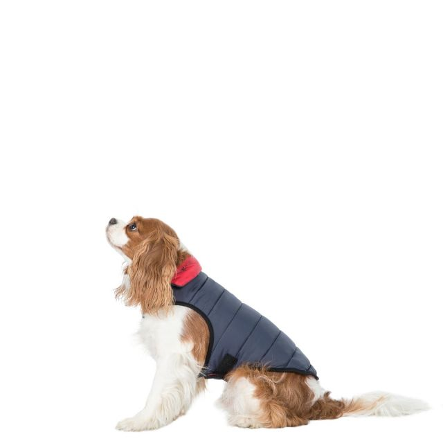 Trespass X-Small Quilted Reversible Packaway Dog Coat Kimmi