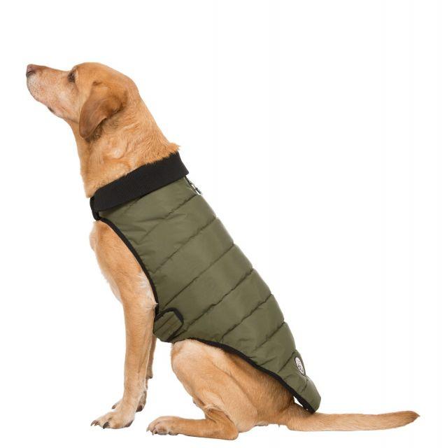 Lloyd Large Dog Puffer Jacket in Khaki
